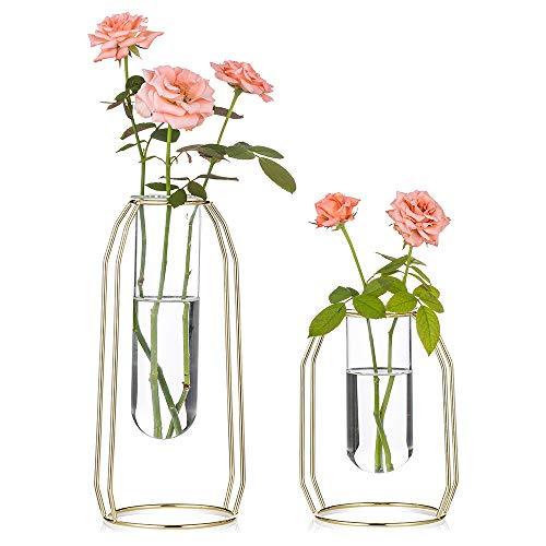 2 Vasi di Fiori con Cornice d'Arte in Ferro, Vaso Geometrico, Vaso Centrale Centrotavola, Supporto da Tavolo per Piante da Tavolo per Arredamento da Tavolo da Ufficio, Oro