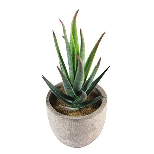 Künstliche Aloe Pflanze - Mini dekorative künstliche Pflanzen, Blumen und Sukkulenten für Hausgarten Dekor