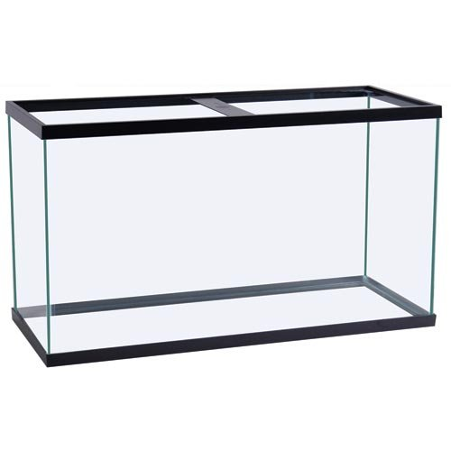 Perfecto Manufacturing APF10040 40-Gallon PF Breeder Aquarium Tank, 36 by 18 by 16-Inch, Black