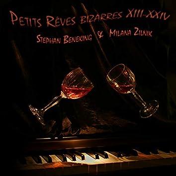 Petits Reves Bizarres XIII-XXIV (feat. Stephan Beneking)