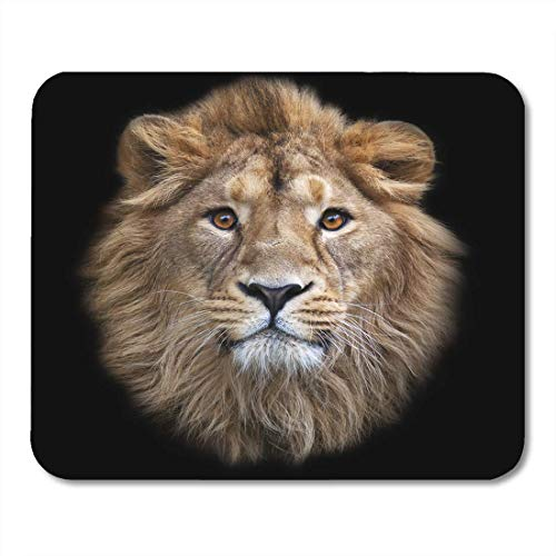 AOHOT Mauspads The Face of Asian Lion King Beasts Biggest Cat World Looking Straight Into Camera Most Dangerous Mouse Pad Mats 9.5