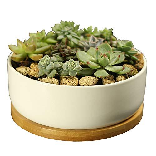 Bcaer Maceta de cerámica redonda profunda con bandeja de bambú en maceta de gran calibre para plantas suculentas y decoraciones de construcción para interiores de cerámica blanca