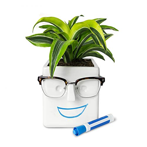 1. Customizable Face Planter