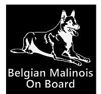 MDGCYDR ステッカー車用ステッカー 12Cm * 12Cm車のステッカーとデカールに乗った興味深いベルギーのマリノア犬の動物は体のデカールで面白い、