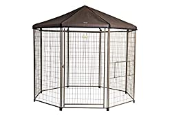 strongest outdoor dog kennel