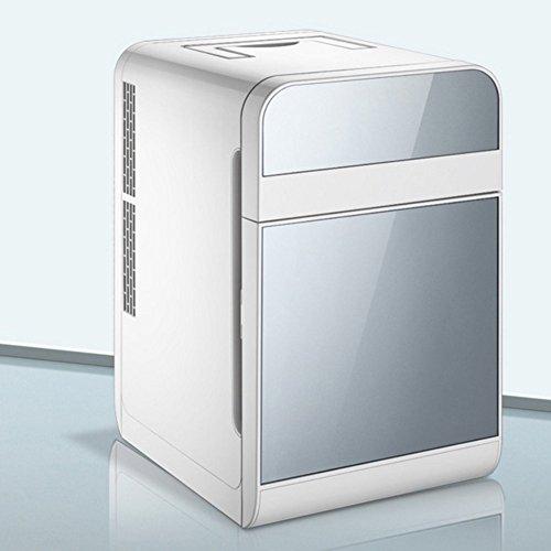 Hongxj 20L Double Réfrigération Voiture Mini Frigo Petite Maison Mini Dortoir Voiture Double Usage Double Porte