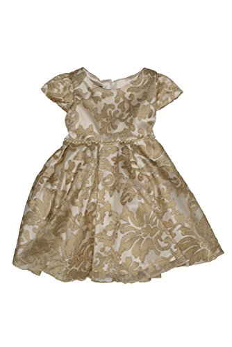 Biscotti Baby - Girl's Infant Royal Treatment Lace Dress, Gold - Size 2T