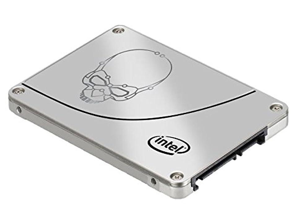 無実円周手つかずのインテル SSD 730 Series 480GB MLC 2.5inch 7mm BOX SSDSC2BP480G4R5