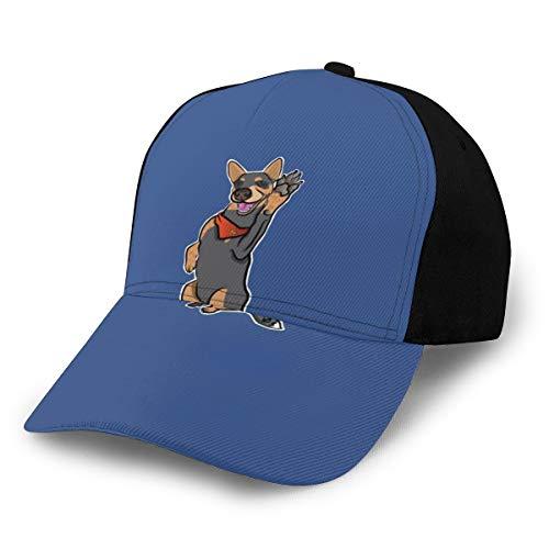 N/ Lefty - Gorro de béisbol para perro ganado con cinco gorras, color negro