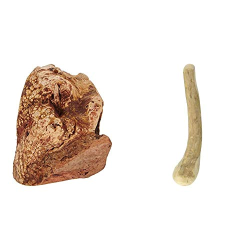 Chewies Kauwurzel für Hunde - Kauspielzeug aus Baumheide Wurzel - Größe S & Kaustab für Hunde - Kauknochen aus Kaffeeholz - splitterfrei und langlebig - Größe S: Für Hunde bis 10 kg Körpergewicht