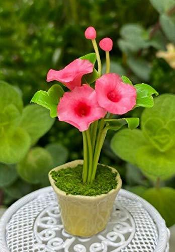 NIBOMID Fairy Garden Accessories Supplies for Miniature Dollhouse Fairy Garden ~ Pink Morning Glories Flowers in Yellow Pot DIY for Miniature Fairy Garden Accessories for Outdoor - Garden Decor.