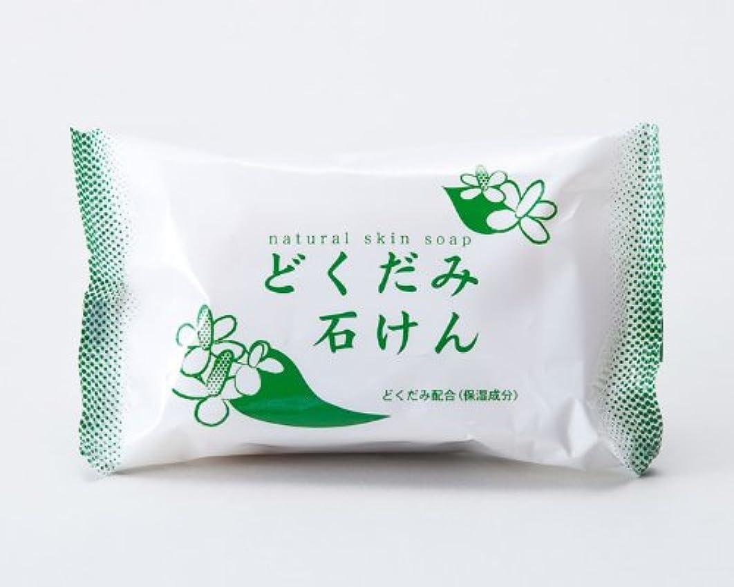 運命悲惨意外地の塩社 DNスキンソープ(どくだみ)130g×100