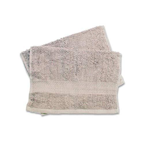 Soleil d'ocre Lot de 2 Serviettes Invités Douceur Coton Ecru 30 x 40 cm