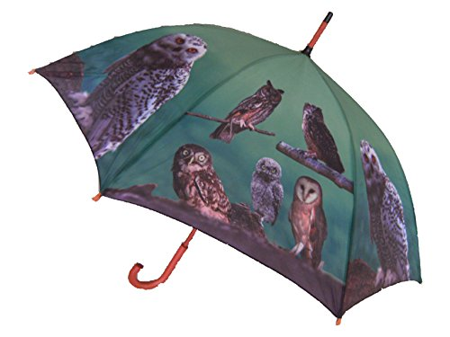 Regenschirm Eule mit Holzgriff, Automatikschirm, Stockschirm, Schirm, Tier, Eulen, Vogel