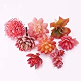 BBGSFDC Artificial Artificial Succulents Combinación Lazy Set Fake Succulents Wall Plastic Flowers Flowers Decoración de la decoración 8 PCS