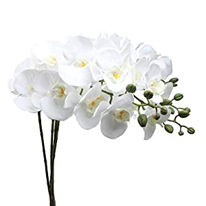 U'Artlines 38 Inch Artificial Phalaenopsis Flowers Branches Silk Orchids Flowers for Home Office Wedding Decoration,Pack of 4 (4pcs White)