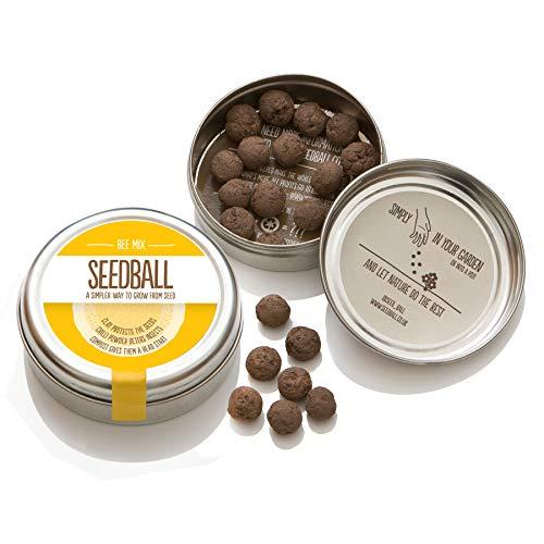Bee Mix Seed Balls - 1000 Native...
