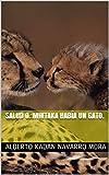 Salud O. Mintaka Había un gato.