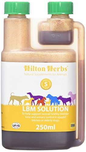 Hilton Herbs LBM Solution 250 ml Flacon Complément Alimentaire Chien Fuites Urinaires et Vessie