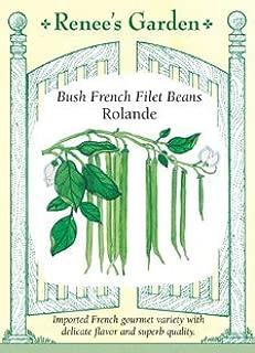 Beans, Bush, French Filet,