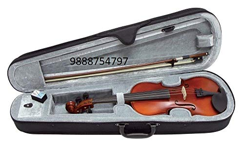 PAL MUSIC HOUSE 4/4 Violin With Case bow & Rosin(imported)