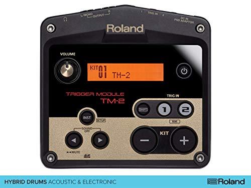 5. Roland TM2 - TM-2 Acoustic Drum Trigger Module