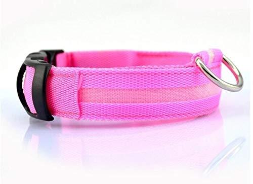 Led Huisdier Nylon Halsband, Nacht Knipperende Gloed In De Hondenriem Honden Lichtgevende Fluorescerende Halsbanden Kraag, Roze, L