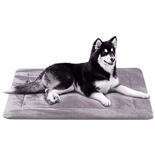JoicyCo Dog Bed Crate Pad