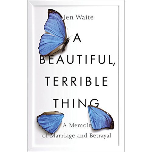 A Beautiful, Terrible Thing audiobook cover art