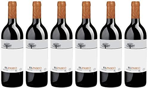 Bio Wein Rotwein Trocken Tempranillo Merlot Spanien Navarra 2017 Cuvée Vegan (6 x 0,75l)