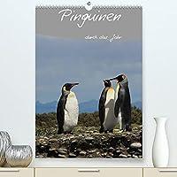 Mit Pinguinen durch das Jahr (Premium, hochwertiger DIN A2 Wandkalender 2022, Kunstdruck in Hochglanz): Dieser Pinguin Kalender begleitet Sie durch das Jahr und bietet genuegend Platz fuer Terminnotizen (Planer, 14 Seiten )