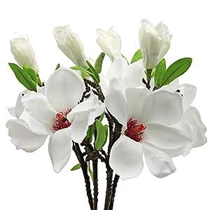 MINYULUA 5PCS Artificial Magnolia Flowers Silk White Magnolia Flowers Realistic Silk Flower Bouquet for Home Table Store Floral Arrangements Wedding Holidays Party Decor