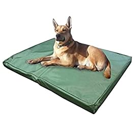 ADOV Dog Beds, Double-sided Waterproof Pet Bed, Durable Oxford Washable Cover Orthopaedic Memory Foam Mat, Cushion Mattress for Dogs, Cats, Other Small and Big Pets – Large – Medium