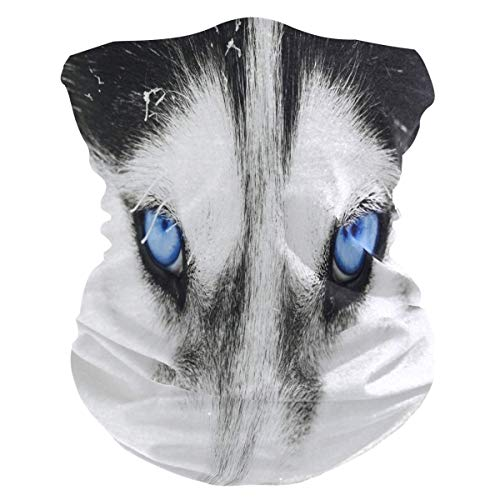Hoofdband Dier Hond Huskie Ogen Gezicht UV Zonnebescherming Masker Nek Gaiter Magic Sjaal Bandana Hoofddeksels Balaclava voor Vrouwen Mannen