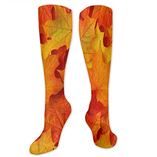Socks Best Fall Leaves In Utah Amazing Womens Stocking Decor Sock Clearance For Girls