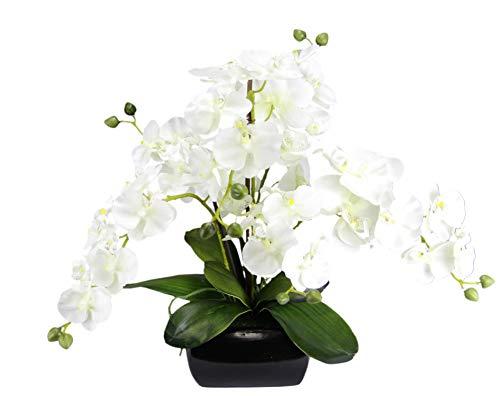 Schmetterling Orchidee mit Blätter und Luftwurzeln in Schale aus Keramik Künstliche Blume Kunstorchidee Phalaenopsis mit Übertopf Kunstpflanze Hochzeit Deko Seidenblume Real Touch Blüte weiß