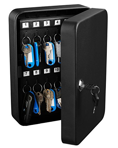 AdirOffice Key Steel Security Storage Holder Cabinet Valet Lock Box (48 Key, Black)