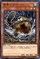 素早いビーバー ノーマルレア 遊戯王 サーキット・ブレイク cibr-jp040