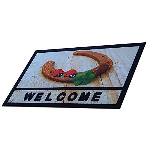 Renoazul Door Mat - Printed Desin Non Slip Door Matt Indoor Rubber Matting, Kitchen Hallway Runner Floor Mat - Washable DirtCatcher Outdoor Rug - Welcome Door Mats (Welcome Lady Bug)