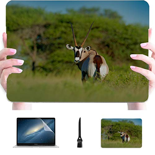 Mac Air Case Beautiful Landmark Antelope Plastic Hard Shell Compatible Mac Air 13' Pro 13'/16' Mac Book Pro Cover Protective Cover for MacBook 2016-2020 Version