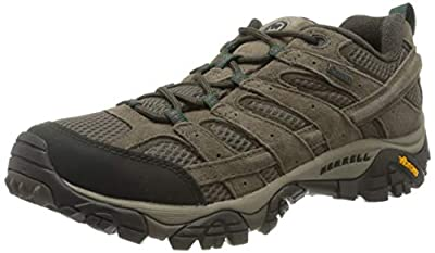 Merrell Men's Moab 2 LTR GTX Low Rise Hiking Boots