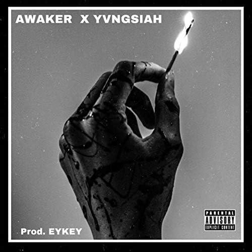 _.Awaker._