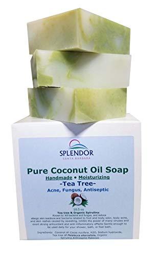 Splendor Tea Tree Coconut Oil Soap Bars with ORGANIC SPIRULINA. Handmade, Vegan, Natural, Moisturizing. Anti-fungal, Anti-bacterial, Acne, Eczema, Jock Itch and Body Odor for Hand, Body and Face
