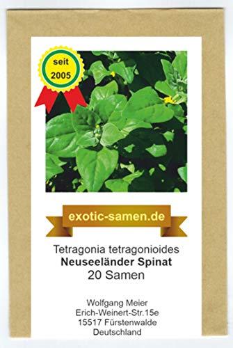 Neuseeländer Spinat - Spinatersatz für den Sommer - 20 Samen