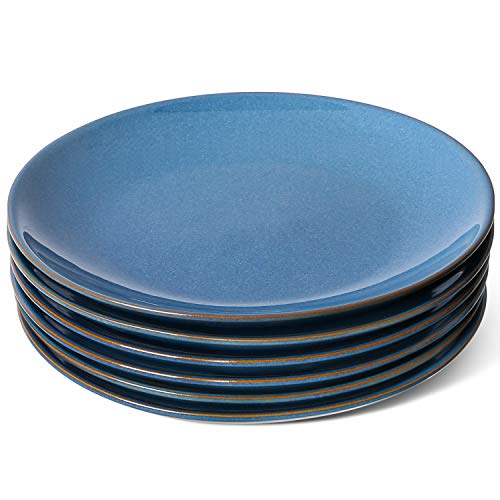 LE TAUCI Dinner Plates 105 Inch Ceramic Reactive Glaze Pasta Plate Set of 6  Ceylon Blue