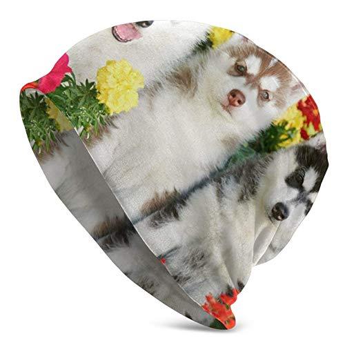 Gorro de Lana, Flor de Husky Siberiano, Gorro de Punto Holgado, Gorro con puños Calientes para Adulto