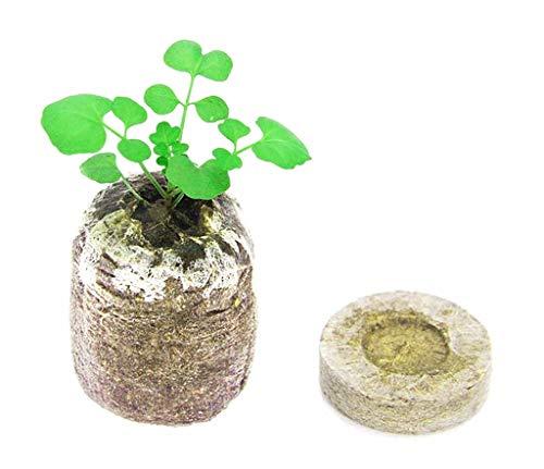 Votono 48 Pods Peat Pellets for Seeds Germination Seeds Starting Fiber Soil Direct Plant Seed Starters 50mm (48)