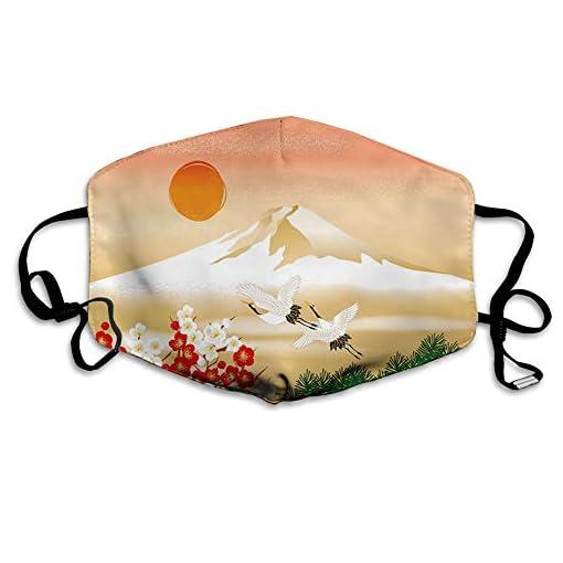 MultifunctionalClothWashableHalf, Graphical Interpretation of Landscape in Japan with Bird