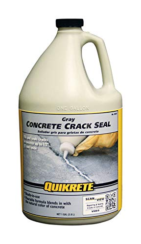 Concrete Crack Seal 1g