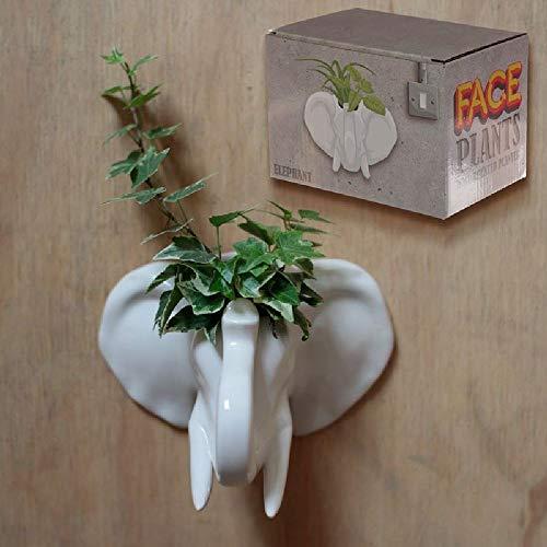 Decorative Ceramic Indoor Wall Planter - Elephant